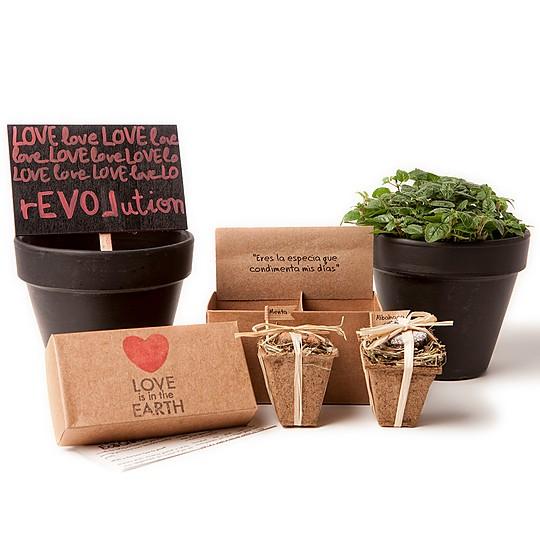 Caja de regalo con dos bombas de semillas de aromaticas