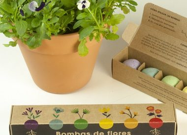 Pack de 6 bombas de semillas flores o hierbas aromaticas
